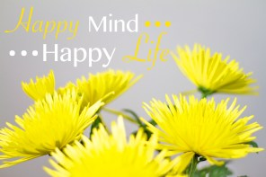 happy mind happy life copy