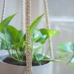 Easy Home Diy Macrame Plant Hanger Tutorial Heylilahey