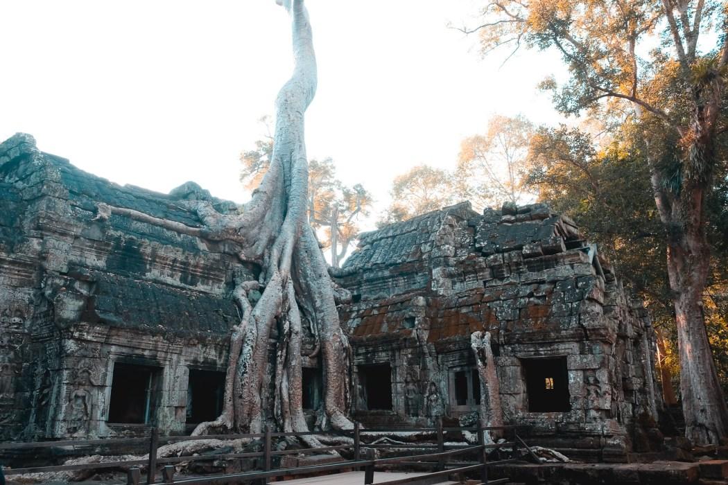 cambodia-49-2