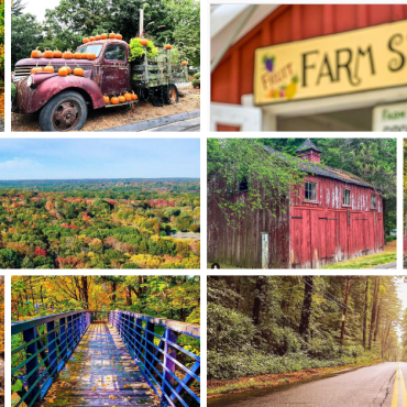 Instagrammable Stamford: 15 Great Spots to See Fall in Stamford