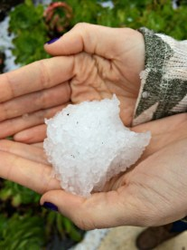 holy hail