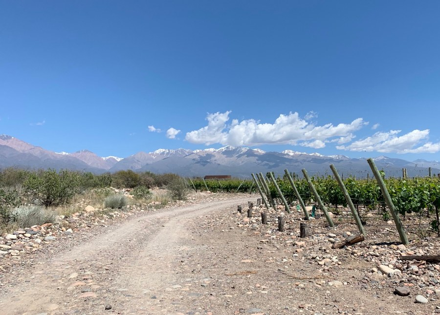 Driving in Argentina on a rocky road to a winery.