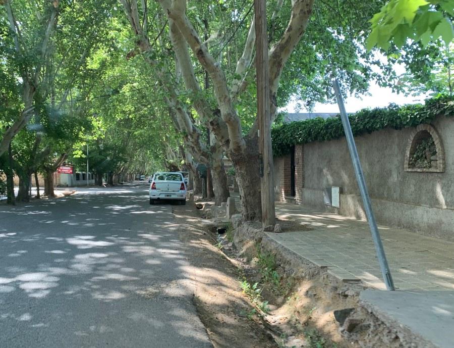 Quiet street in Chacras de Coria, Lujan de Cuyo