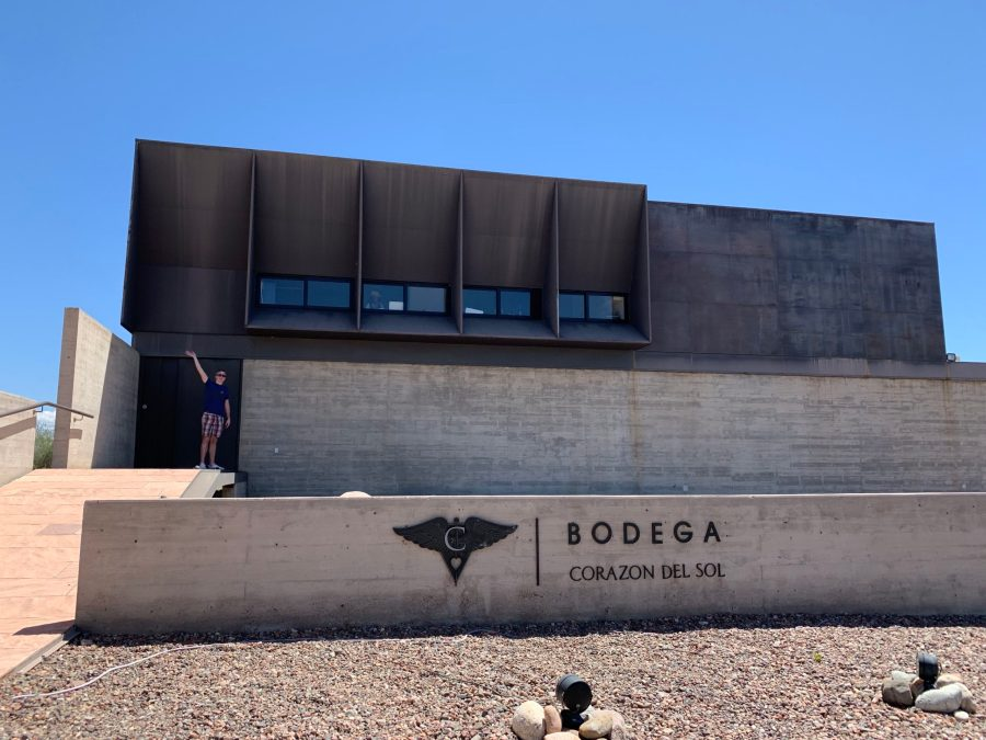 Steel and concrete wineries make themselves at home in the Uco Valley