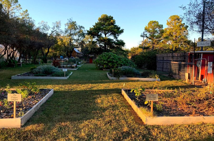 gardens at Urban Herbal in Fredericksburg, TX