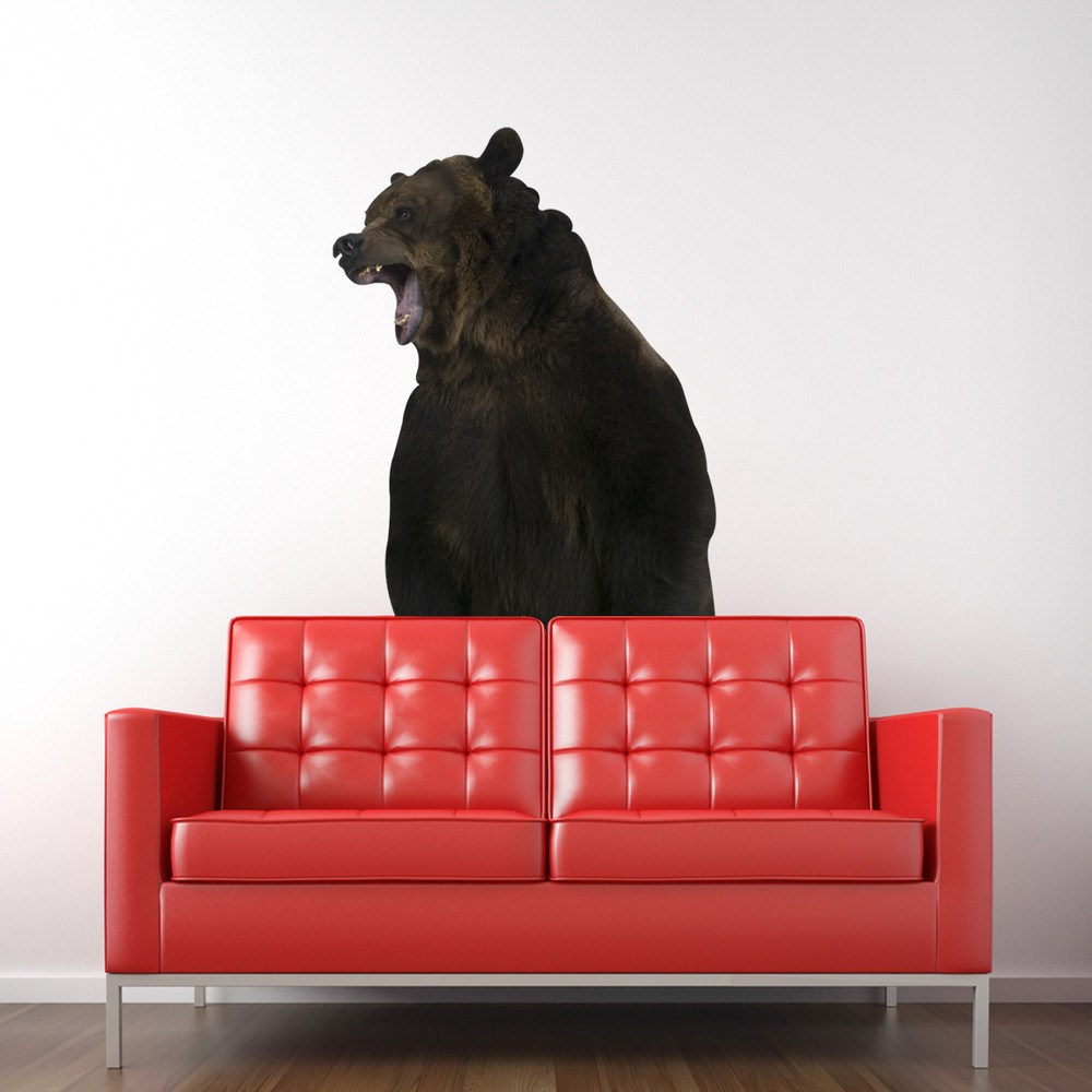 Black Bear Wall Decals