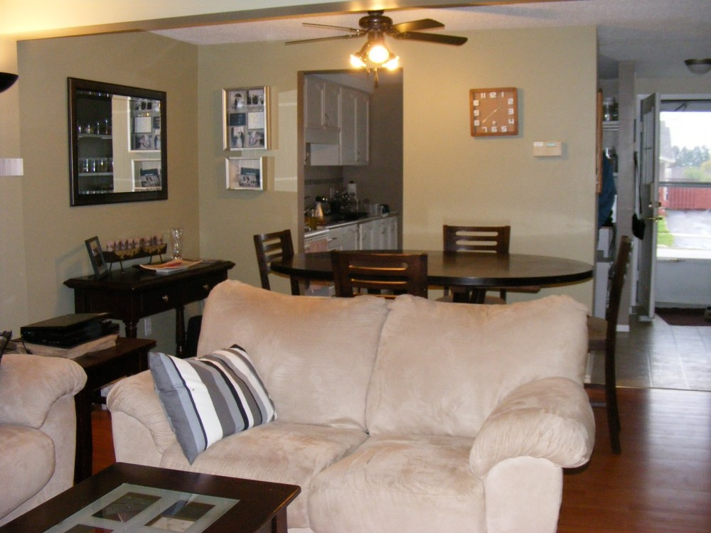 Divider For Living Room And Dining Room