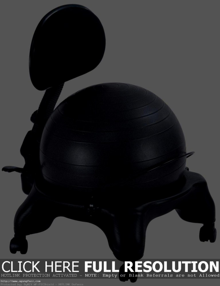 Ergonomic Ball Office Chairs