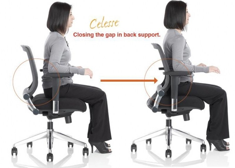 Good Back Support Office Chairs