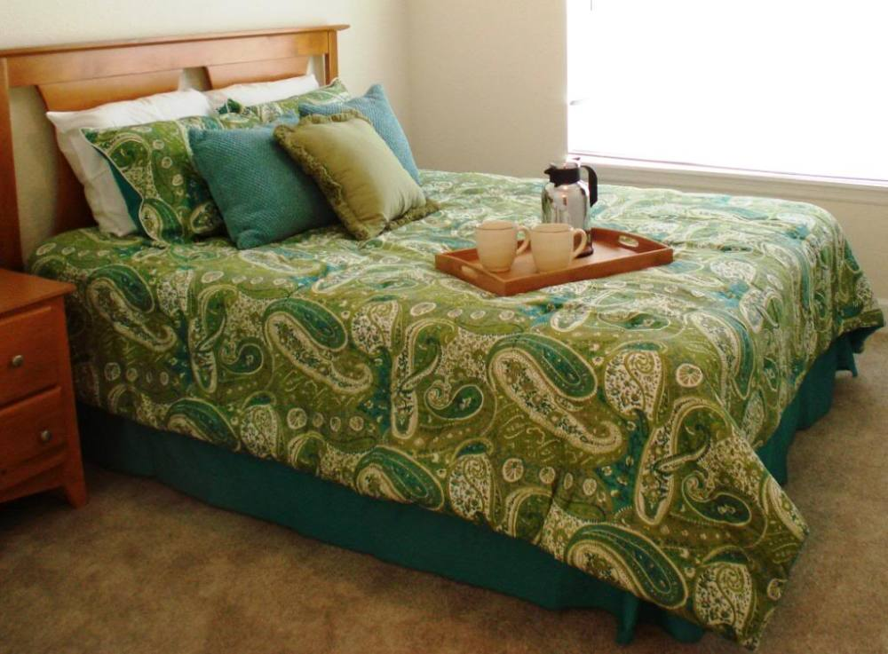 Green Queen Comforter Set