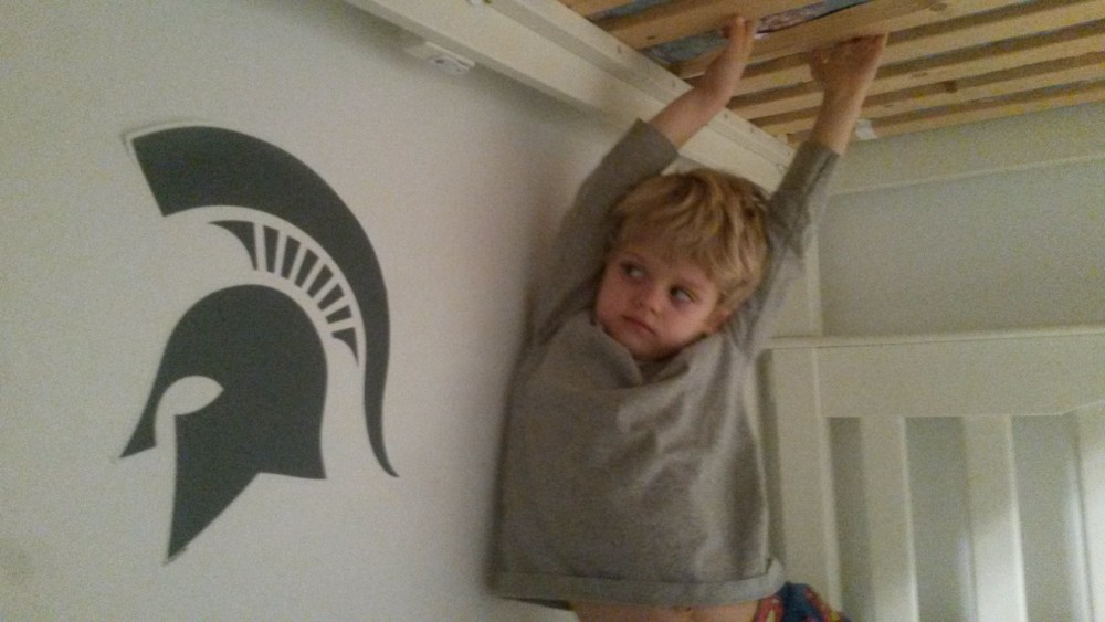 Michigan State Wall Decals