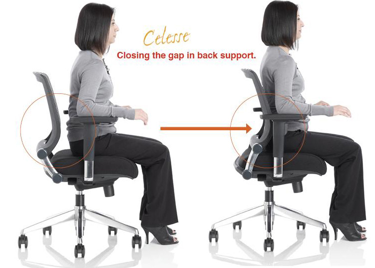 Office Chair Support