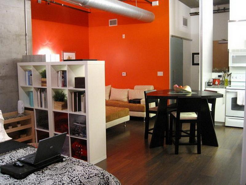 Room Dividers Ideas Studio Apartment