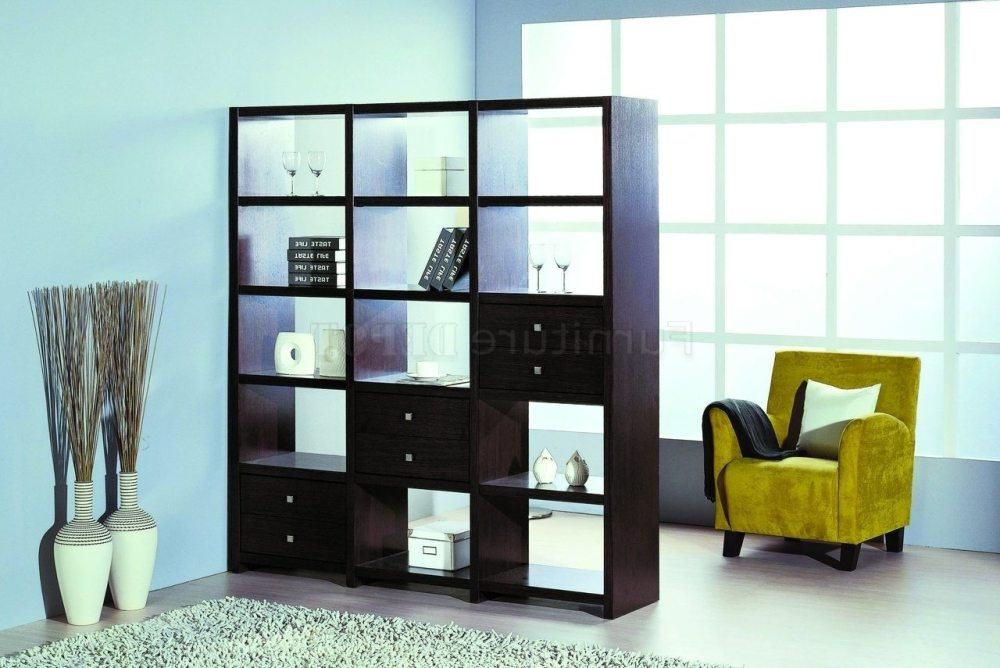Room Dividers With Shelves
