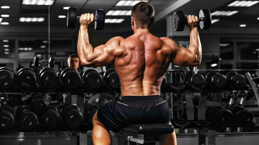 great-bodybuilder-back