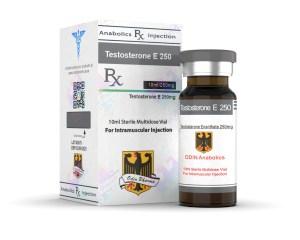testosterone-enanthate-odin-pharma