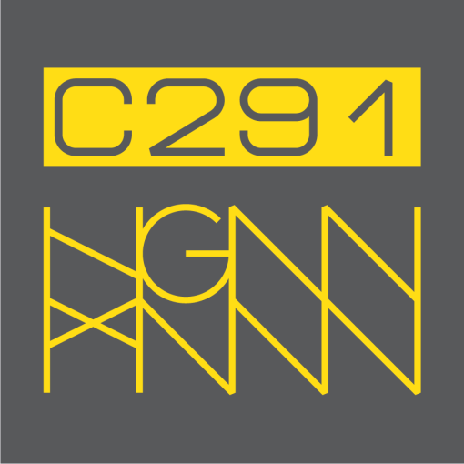 C291: HAZARDOUS MATERIAL logo gray