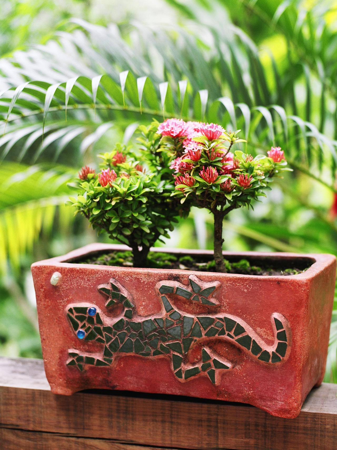 Miniature Landscaping Ideas
