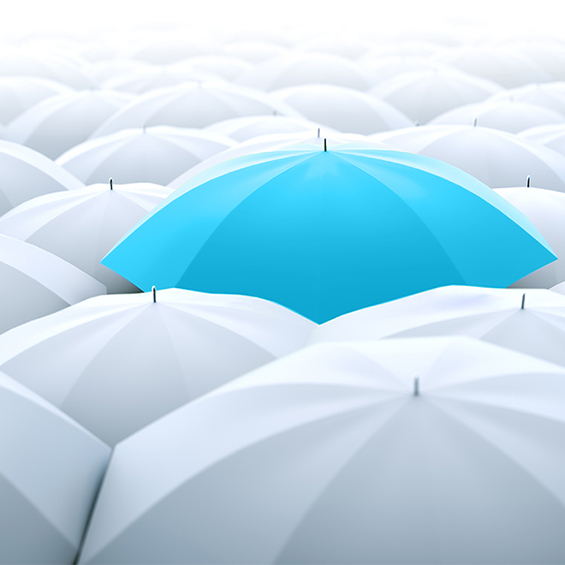 Blue umbrella in a row of white ones