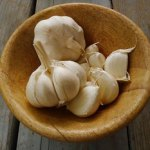 Garlic Great for Food Poisoning