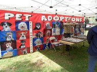 13 May pet adoption