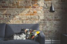 use these fabrics for pet friendly homes