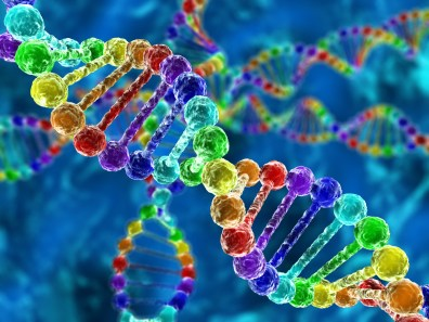 A DNA strand done up in rainbow colours