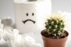 Toilet paper roll with sad smile and cactus on white background; concept painful hemorrhoids