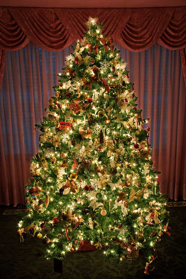 Christmas Trees Real Or Artificial The Devils Advocate