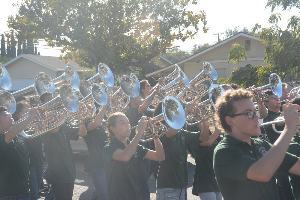 The+brass+section+of+the+marching+band