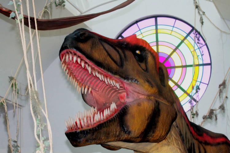 hi-mundim-dinossauros7