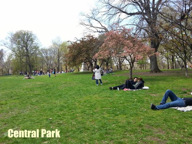 NY_Central_Park_2
