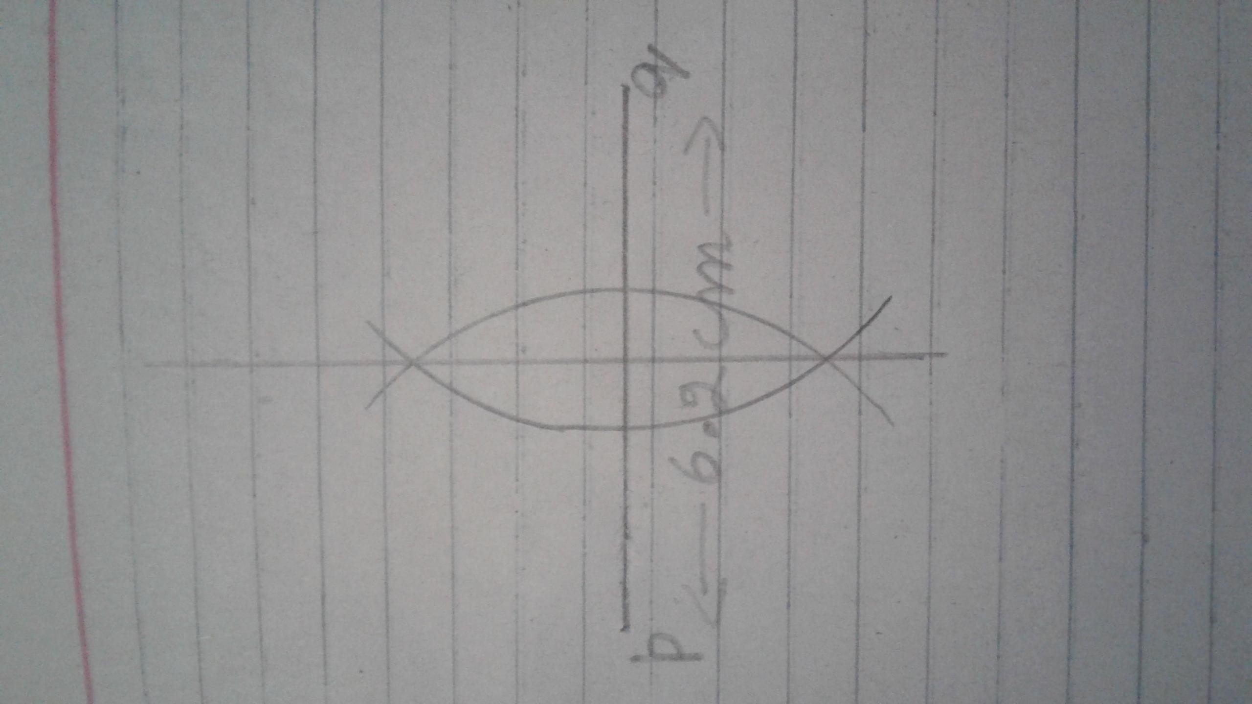 Draw A Line Segment Pq 6 2cm Draw The Perpendicular