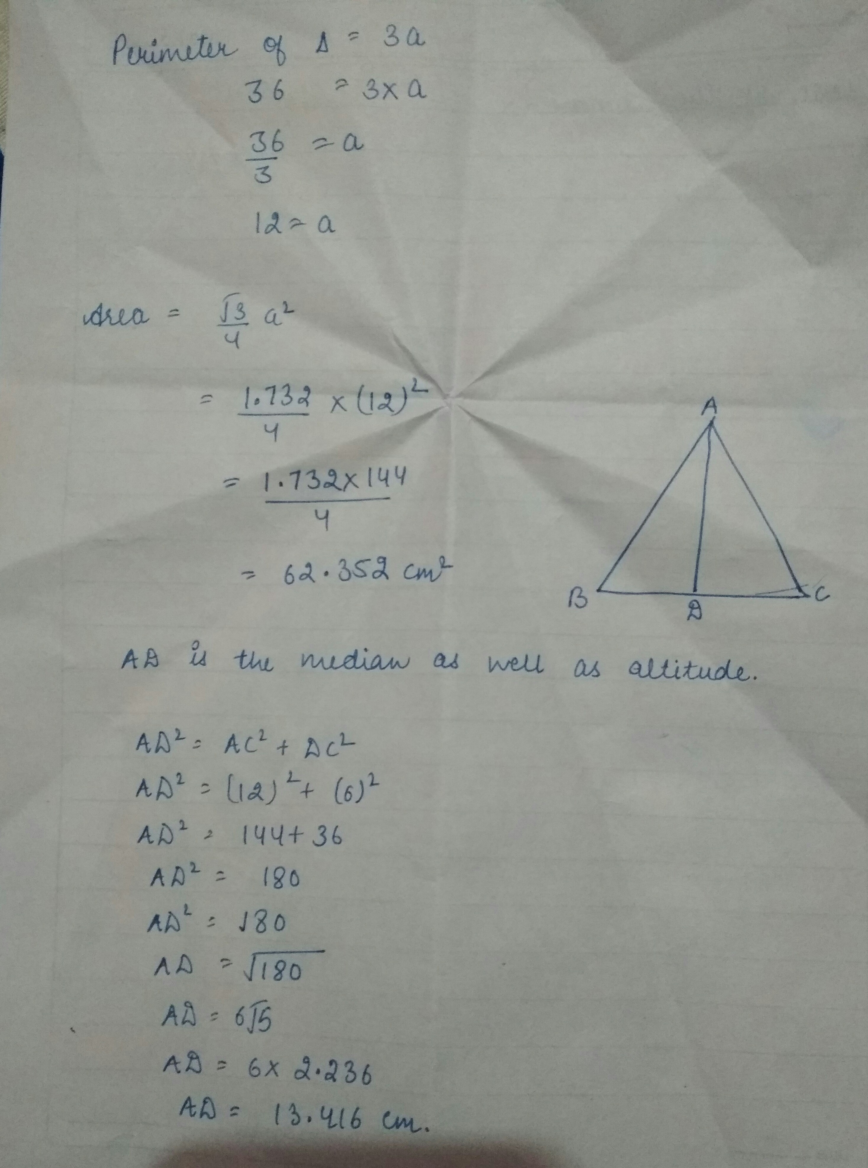 If The Perimeter Of An Equilateral Triangle Is 36cm