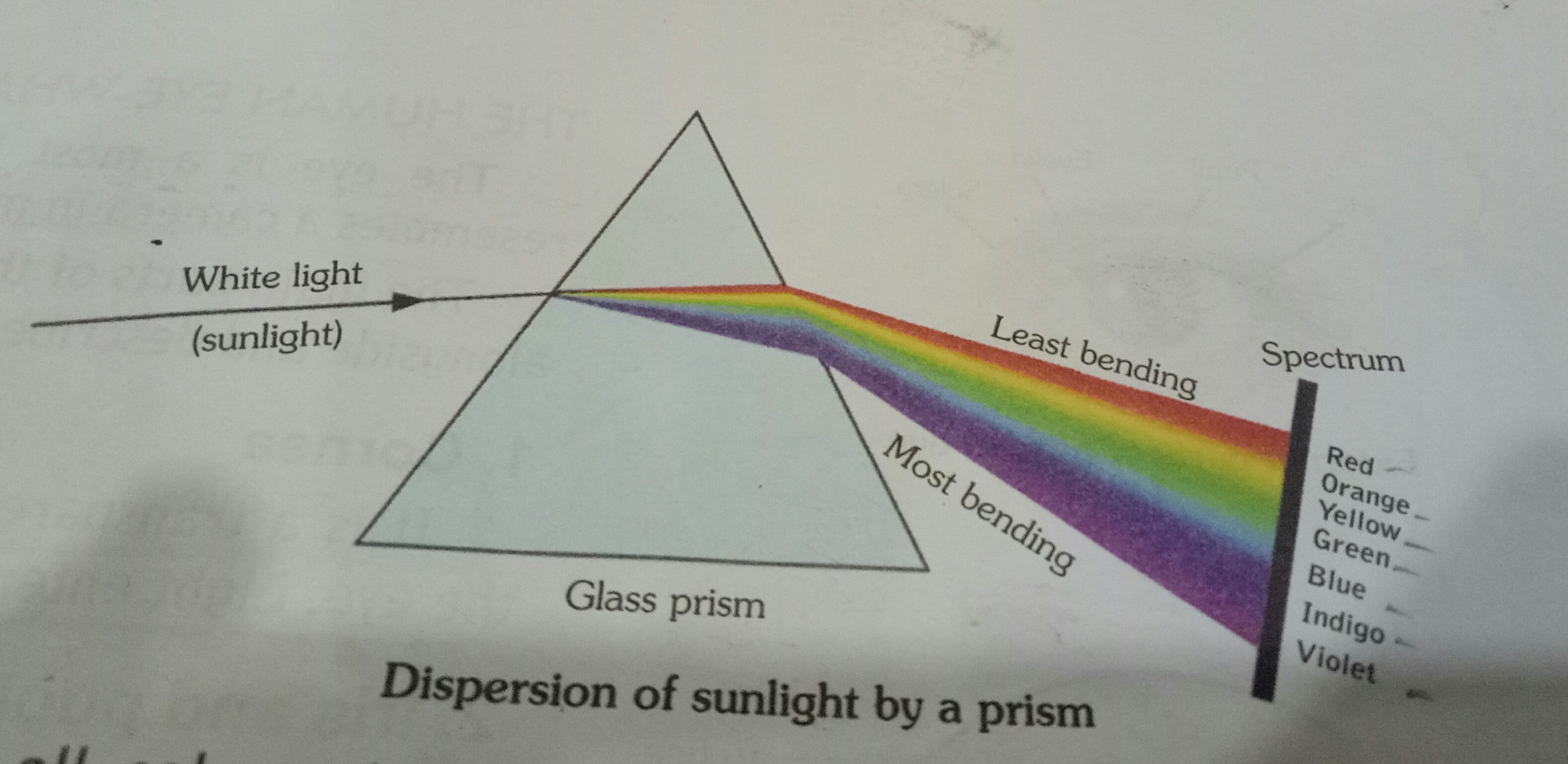 Draw A Labelled Ray Diagram To Illustrate The Dispersion