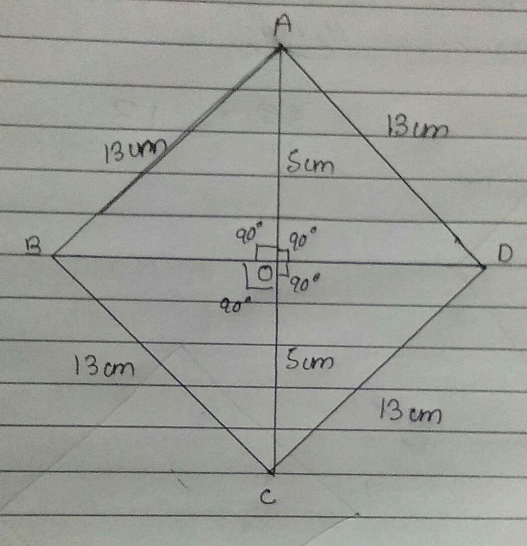 The Perimeter Of A Rhombus Is 52 Cm And One Of Its