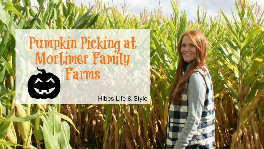 Pumpkin Picking at Mortimer Family Farms