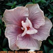 EMMA Show Me Love