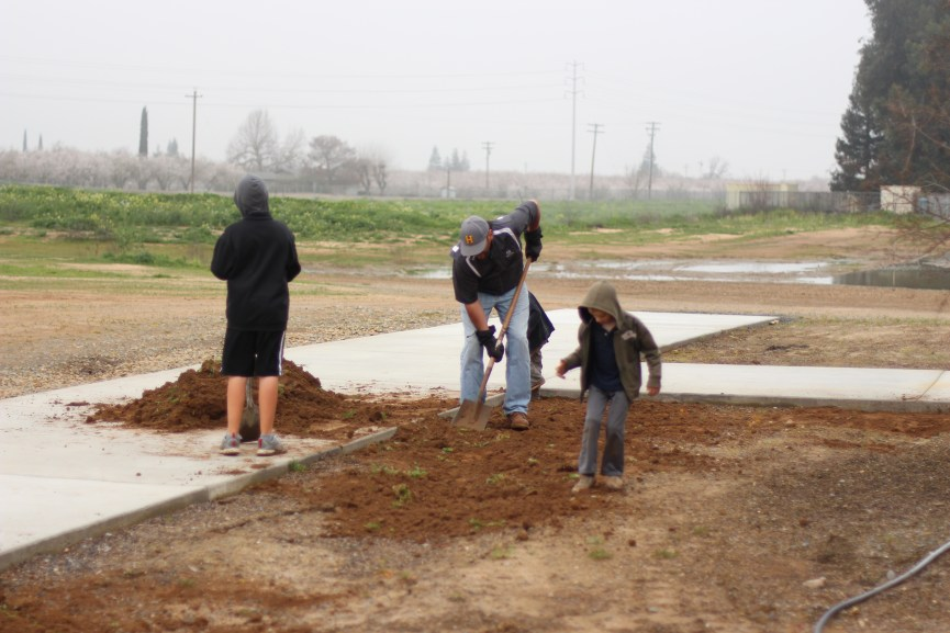 HCC Workday Feb2016 (43)