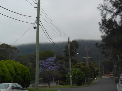 Looking up Hicks St Russell Vale towards the Illawarra Escarpment