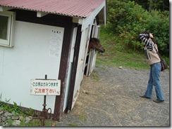 北海道2008年8月22日~29日 079