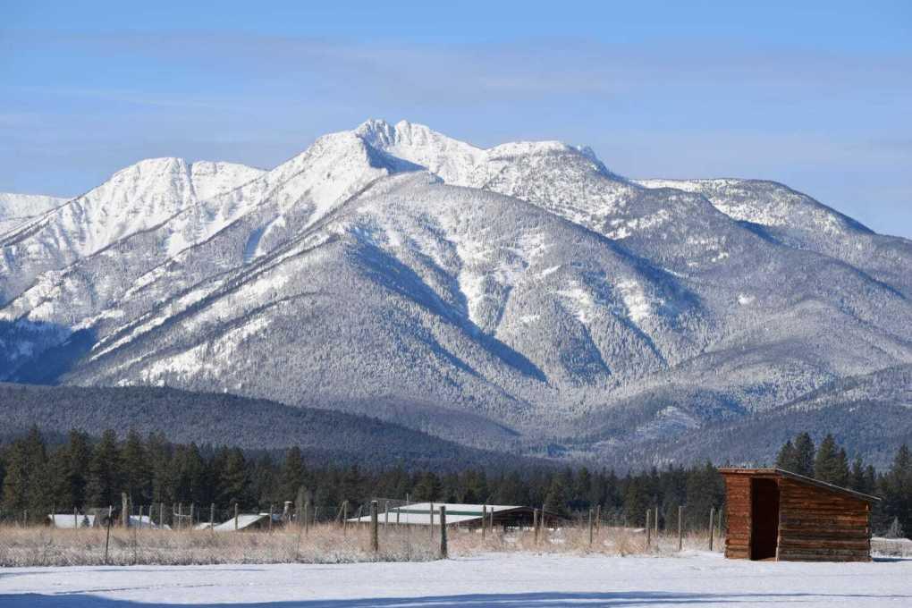hidden acres moves to montana mountains