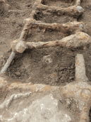 Excavated bed frame