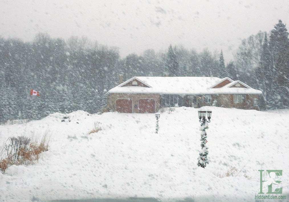 Muskoka Snow Storm