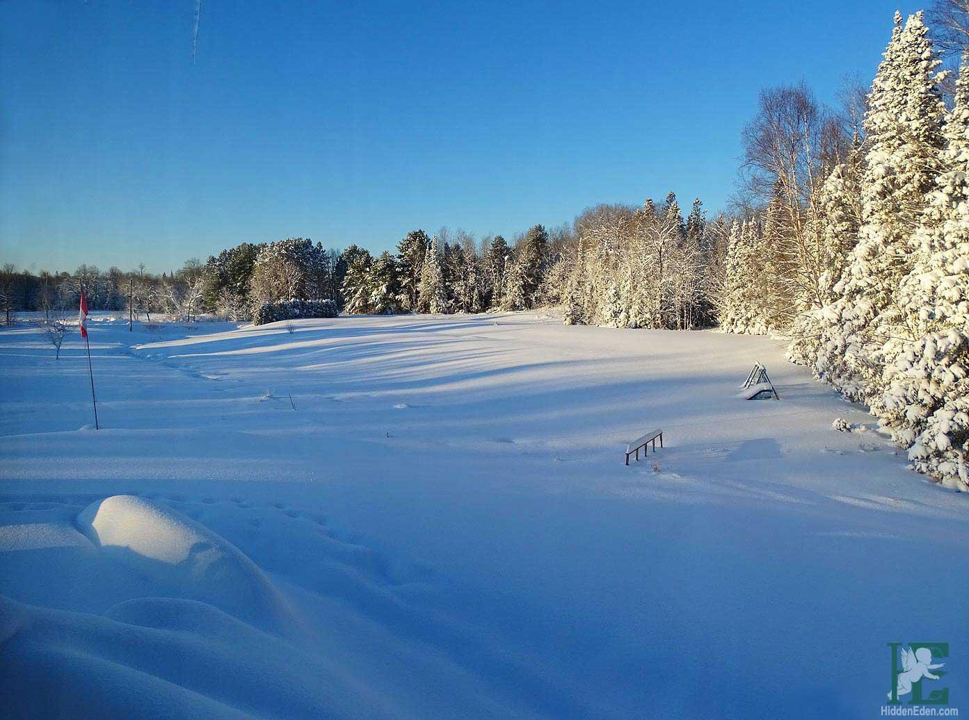 Muskoka Winter Landscape