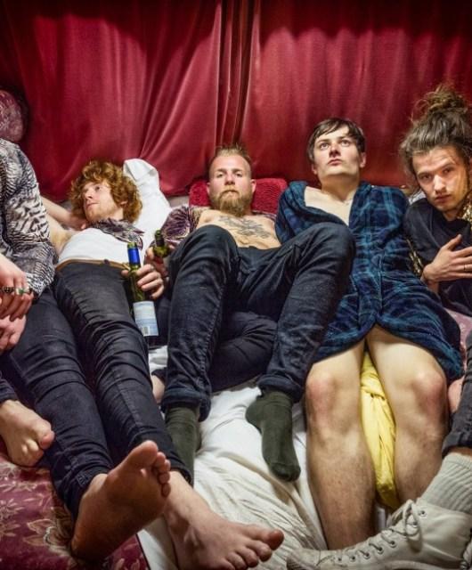 Avalanche Party - Hidden Herd