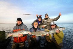 Brown Trout Group Catch | Hidden Iceland