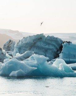 Icebergs floting on Jökulsárlón