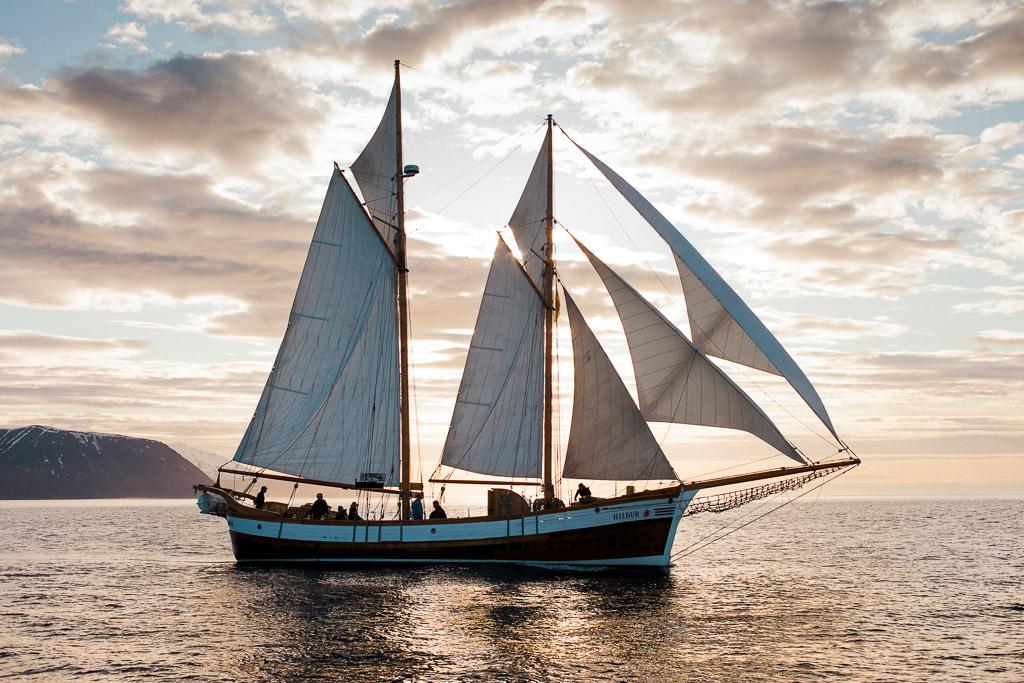 Sail Midnight Sun | Hidden Iceland | Photo North Sailing