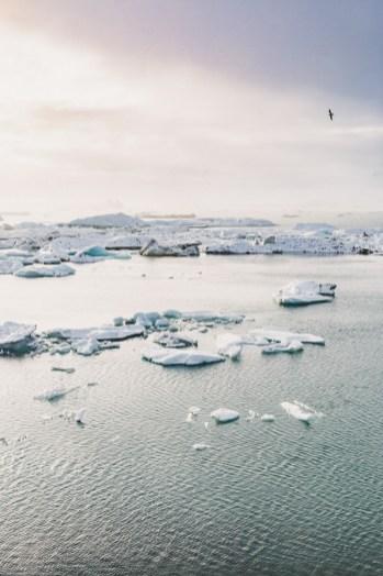 Jökulsárlón Glacier Lagoon winter snowy sunset iceberg